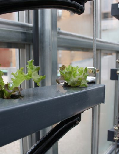 © Photo Fraunhofer UMSICHT - inFARMING Concept: Demonstrator for vertical agriculture, Manhattan School for Children, NY, USA